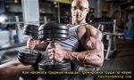 Лучшие упражнения на грудные – Самые лучшие упражнения для грудных мышц: полный обзор!